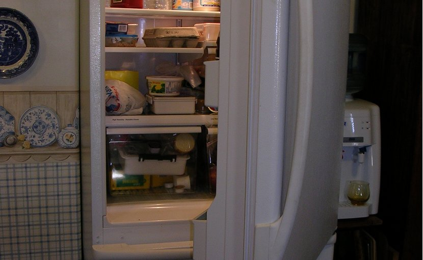 food fridge refrigerator
