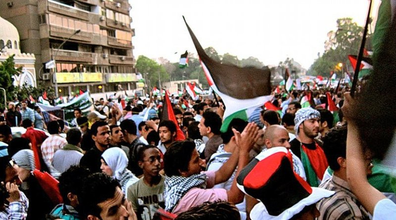 A pro-Palestine protest in Cairo, Egypt. Photo by Gigi Ibrahim, Wikimedia Commons.