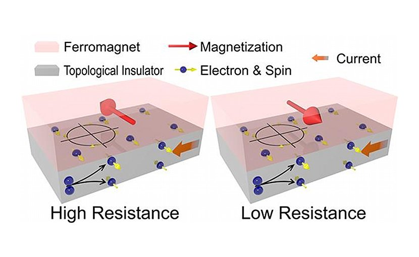 The schematic figure illustrates the concept and behavior of magnetoresistance. The spins are generated in topological insulators. Those at the interface between ferromagnet and topological insulators interact with the ferromagnet and result in either high or low resistance of the device, depending on the relative directions of magnetization and spins. Credit University of Minnesota