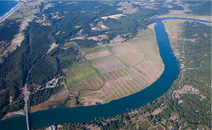 Under projected rates of sea level rise bleak future for for Oregon fish and wildlife jobs