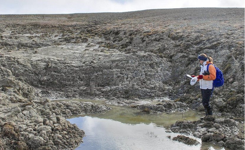 Researcher Gillian Thiel records water samples taken from a pond in the High Arctic near the Cape Bounty Arctic Watershed Observatory. Credit Melissa Lafrenière.