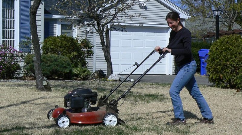 Ecologist Susannah Lerman of UMass Amherst mowing a suburban lawn that was part of her study of bee populations and diversity. In exchange for participation, homeowners got free lawn mowing from the researchers, who cut roughly 350 miles of grass over the two-year study. Credit UMass Amherst