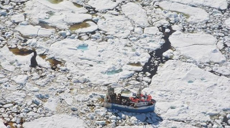 This is a crab fishing boat trapped in the multiyear sea ice off the Newfoundland coast. Credit David G. Barber