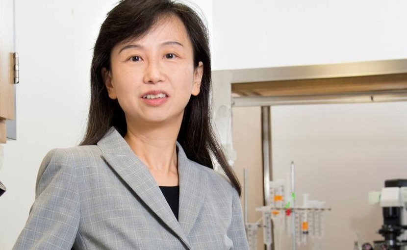 Zhen Yan, PhD, professor, Department of Physiology and Biophysics, has founded a startup company based on the promising results. Credit Sandy Kicman/University at Buffalo