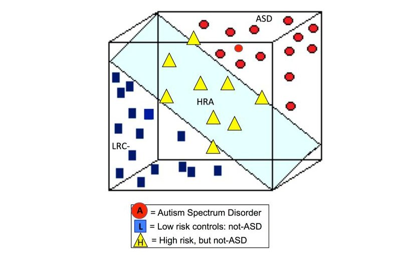 Calibrated Severity Scores (CSS), part of the Autism Diagnostic Observation Schedule (ADOS), measure ASD symptom severity based on clinical assessment. This figure illustrates the CSS scores that were predicted for each of the participants, based on machine learning algorithms applied to EEG data. Credit Credit: William Bosl, Ph.D.