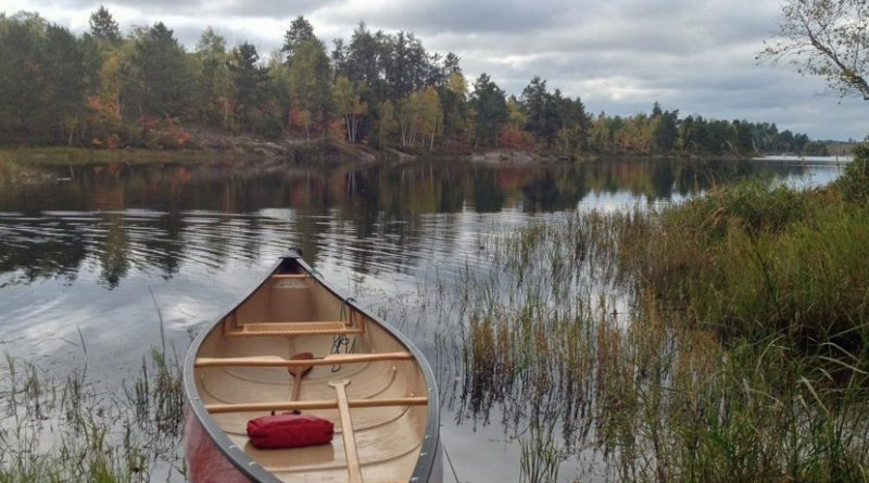 This is a lake in Canada's Boreal Shield, near Sudbury, Ontario, with aquatic plants in the foreground providing fuel for methane production. Credit Andrew Tanentzap