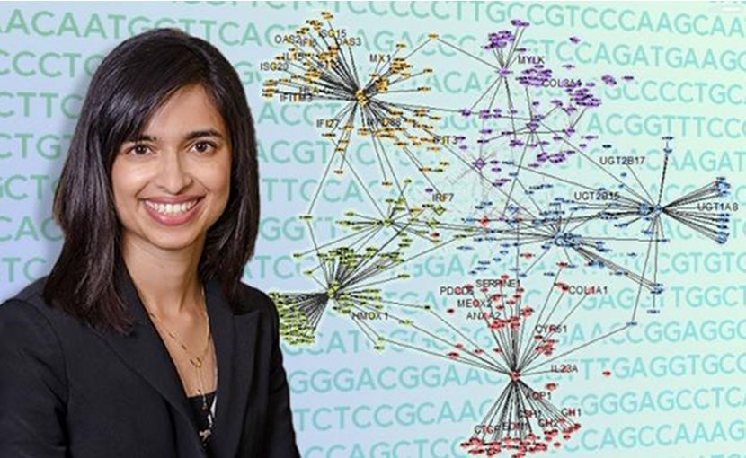 Megha Padi, Ph.D., director of the UA Cancer Center Bioinformatics Shared Resource and an assistant professor of molecular and cellular biology, developed a computer algorithm called ALPACA that reveals which gene networks are activated in a diseased cell. Credit University of Arizona Health Sciences/BioCommunications