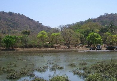 Elephanta Island, India. Photo Credit: shuri, Wikimedia Commons