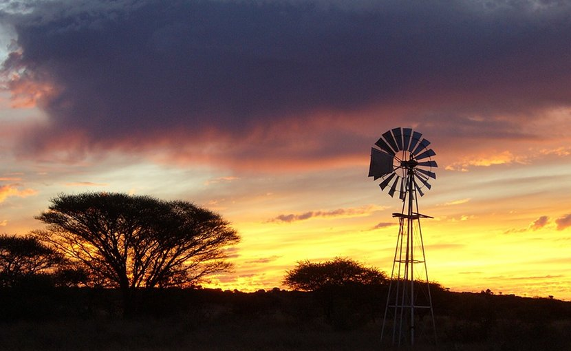 Farm in South Africa