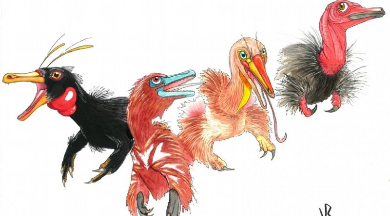 From left to right: Haplocheirus, Xiyunykus, Bannykus, and Shuvuuia. Note the lengthening of the jaws, reduction of the teeth, and changes in the hand and arm. Credit Viktor Radermacher