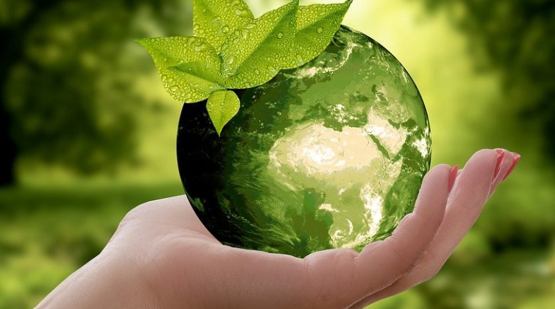 sustainability nature climate