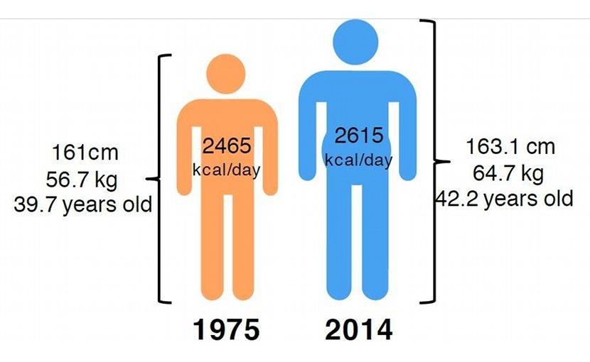 The average global adult is bigger, older and needs more food than before. Illustration: NTNU
