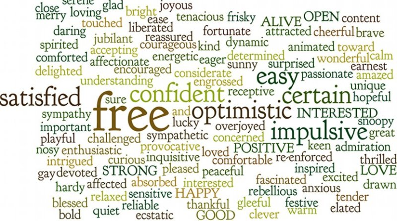 personality emotion feeling