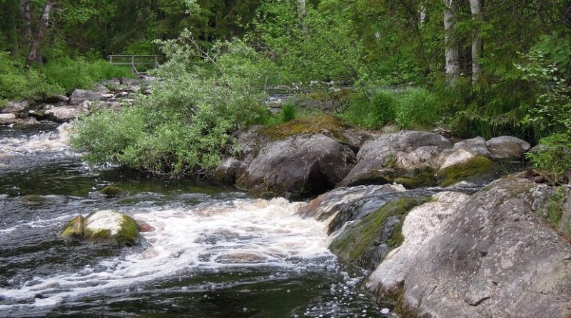 A small stream in Finland.