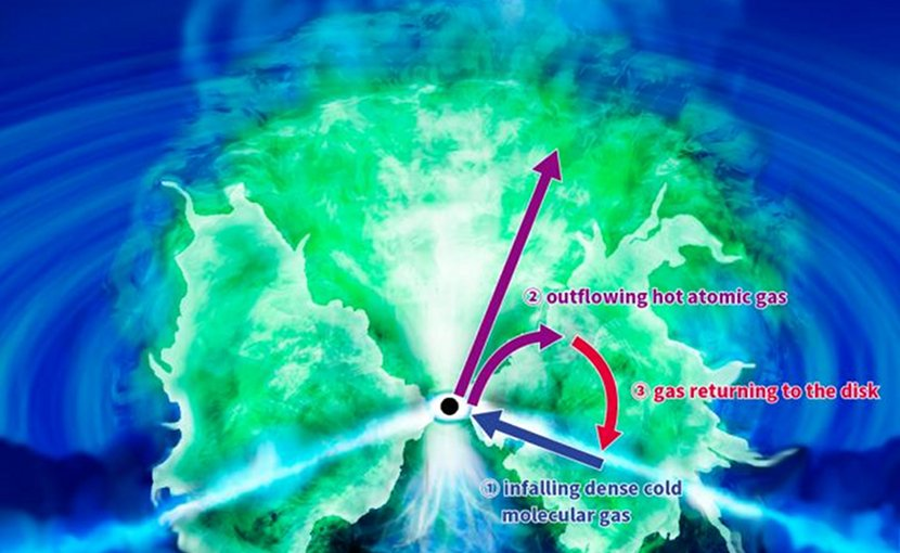 The three gaseous components form the long-theorized 'donut' structure: (1) a disk of infalling dense cold molecular gas, (2) outflowing hot atomic gas, and (3) gas returning to the disk. Credit NAOJ