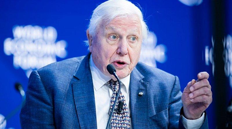 Sir David Attenborough. Photo Credit: World Economic Forum / Boris Baldinger