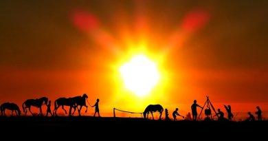 farm farmer cowboy horse sunset