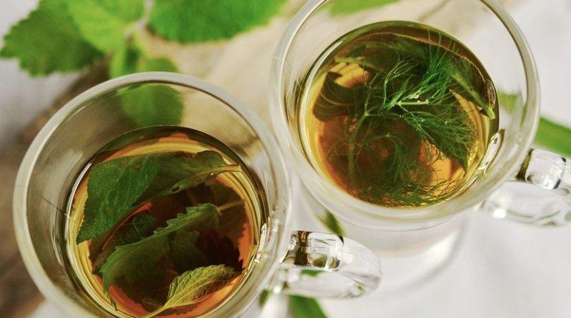 herb tea medicinal plant