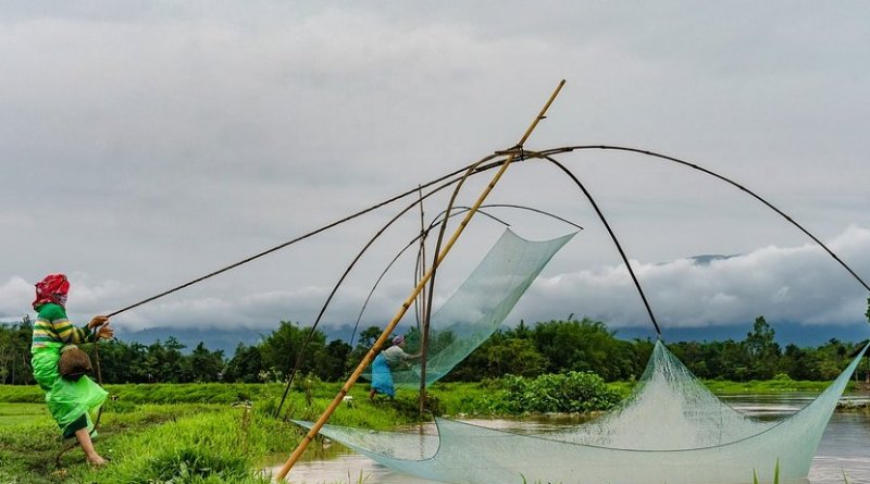Women fishing in Manipur, India