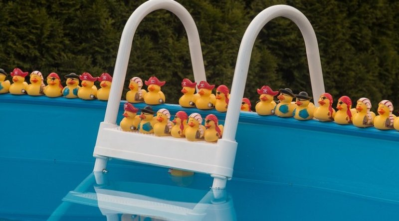 rubber duck pool swimming