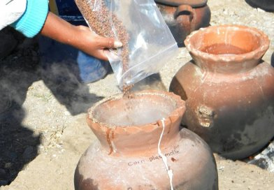 A team worked with Peruvian brewers to recreate the ancient chicha recipe used at Cerro Baul. Credit: Donna Nash