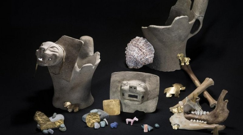 The team found ritual offerings consisting of ceramic feline incense burners; sacrificed juvenile llamas; and gold, shell and stone ornaments Credit Teddy Seguin
