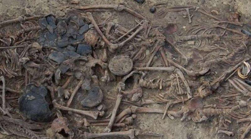 Photograph of Koszyce mass grave. Photo Credit: Tomasz Konopka