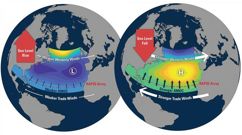 As the North Atlantic Oscillation (NAO) changes, it affects the trade winds, which blow from the east across the tropical Atlantic. When the NAO is high, the trade winds are stronger than normal, which in turn strengthens the Atlantic Meridional Overturning Circulation (AMOC). But at the same time, the westerly winds over New England are also stronger than usual. Together with unusually high air pressure on the northeast coast, this lowers the average sea level. It's wind and pressure that are driving both phenomena. Credit Illustration by Natalie Renier, Woods Hole Oceanographic Institution