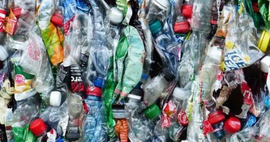 recycling bottle plastic