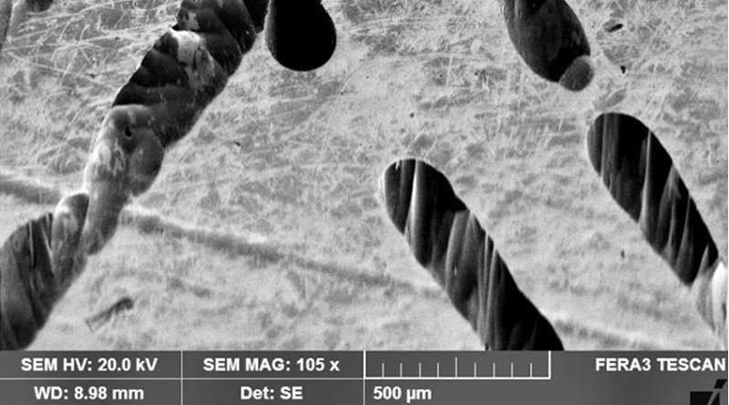 This is an SEM image of the corroded Ni surface. Credit Mengying Liu, Texas A&M University