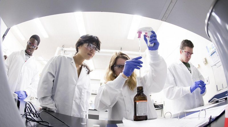 Students in the First-Year Research Immersion program work in a laboratory. Credit Binghamton University, State University of New York