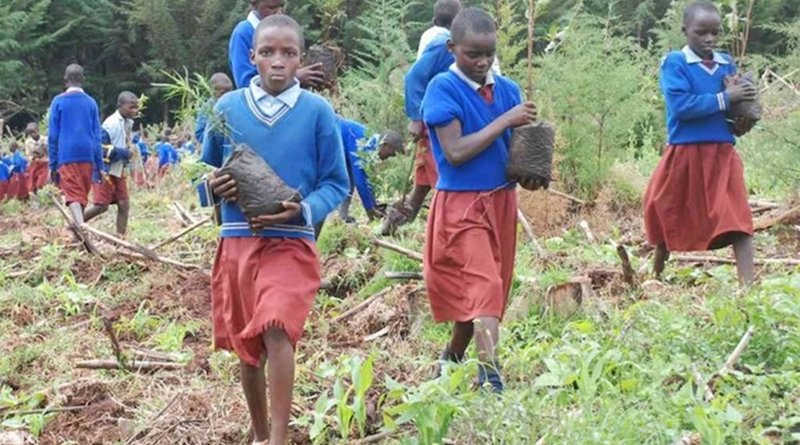 Kenyan children planting trees. Source: The African News Journal.