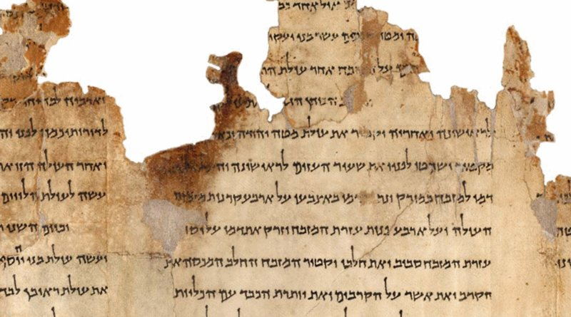 Portion of the Temple Scroll. Photo Credit: Israel Museum, Wikipedia Commons