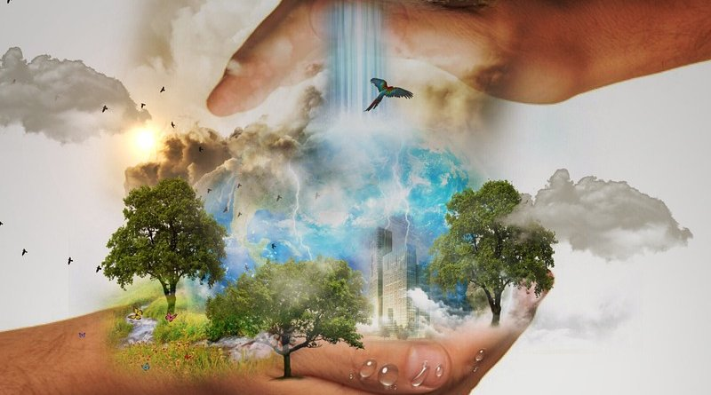 nature conservation climate
