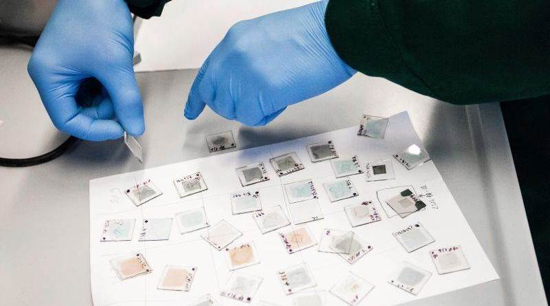 Material, synthesised by Kaunas University of Technology (KTU), Lithuania scientists, which self-assemble to form a molecular-thick electrode layer, presents a facile way of realising highly efficient perovskite single-junction and tandem solar cells.