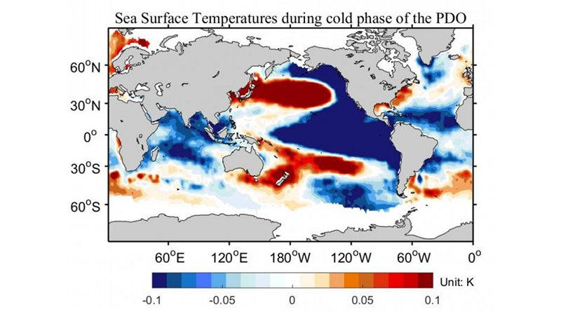 Sea surface temperatures during cold phase of PDO CREDIT CSHOR