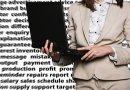 female executive businesswoman computer sales