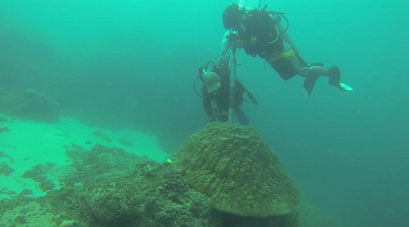 Phil Thompson and Nicolas Duprey, members of the Baker's lab (The University of Hong Kong) coring a massive coral Porites in Guam in 2014. A similar technique was used to extract the coral core used in the present study. It must be noted that coral coring do not kill the coral colony. CREDIT @The University of Hong Kong