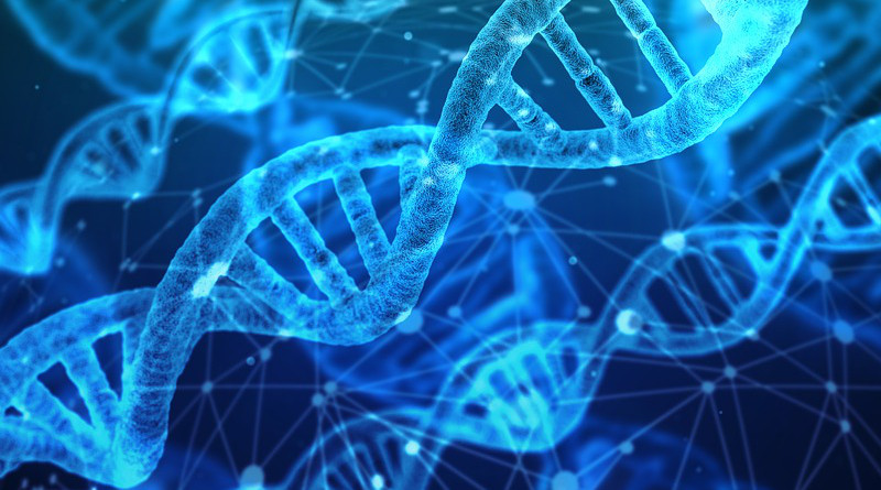 Dna Genetic Material Helix Proteins Biology