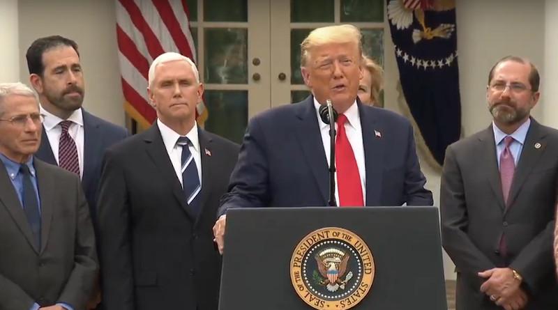 US President Donald Trump declares National Emergency due to Coronavirus pandemic. Photo Credit: White House video screenshot