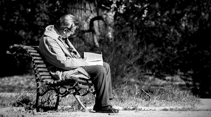 Man Reading Book Spain Solo Reader Old Park Old Sitting In The Park