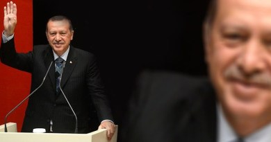 Recep Erdogan Turkey President Politician Turkish Ruler