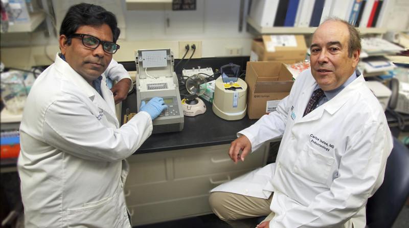 Drs. Carlos M. Isales and Sadanand Fulzele. CREDIT: Phil Jones, Senior Photographer, Augusta University