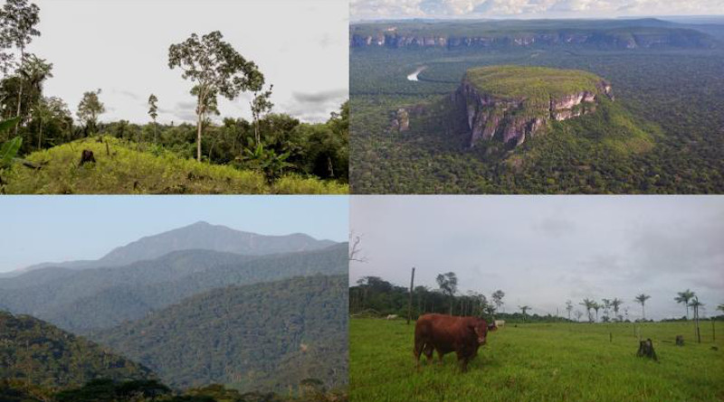 Colombian landscapes included in the study. CREDIT Pablo Negret