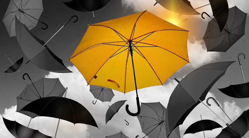 Individualism Umbrella Yellow Black White Selection Especially