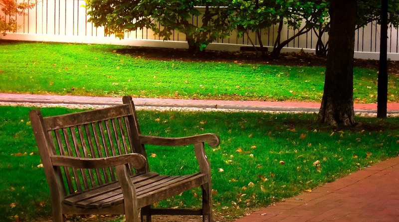 Bench Wooden Park Bench Park Outdoor Lawn Grass