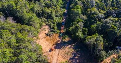 Illegal logging in progress outside Wawi Indigenous Territory in Brazil's Amazon. Image by Kamikia Kisedje, Rede Xingu+.