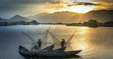 Mekong Vietnam Boat Environment Fish The Fishermen Fishing