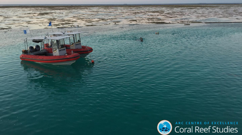 Issuing permits for human activities at larger scales than the particular individual marine features of interest, such as reefs or islands, is part of effective management. CREDIT: Graeme Cumming