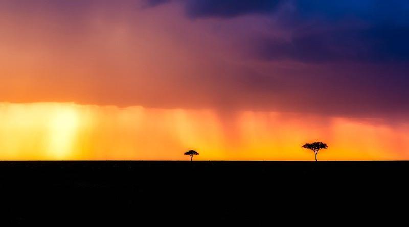 Kenya Africa Landscape Storm Raining Trees